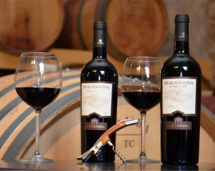 Try the wine at the Best Western Hotel Rocca and discover the flavours of Cassino